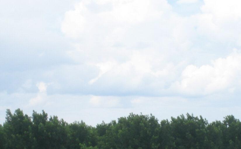 Blick auf den Himmel